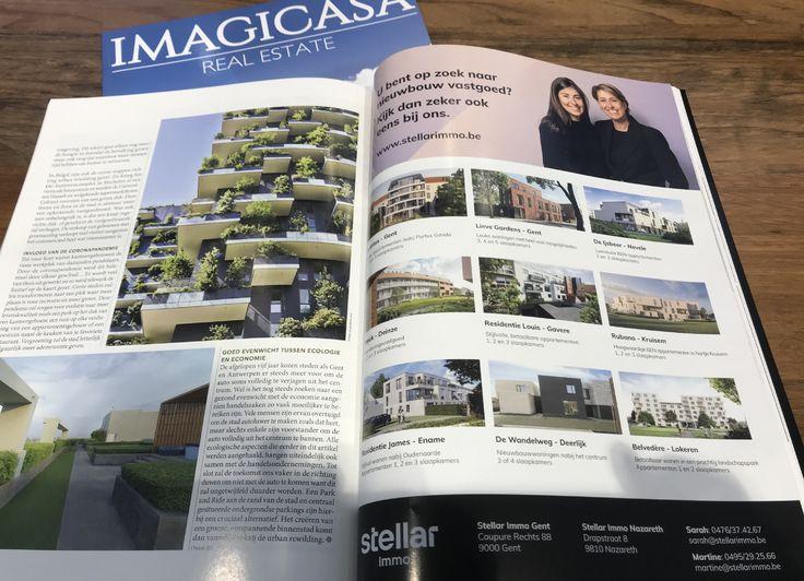 Stellar Immo in Imagicasa Real Estate